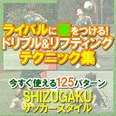 楽天イースリーショップSHIZUGAKU サッカースタイル 〜個人力upで局面を打開する!〜 (全2枚)