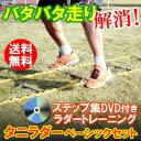 タニラダーベーシック シングルセット DVDセット ラダートレーニング