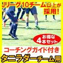 タニラダーベーシック チームセット(ラダー4本組) DVDセット ラダートレーニング
