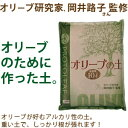 オリーブ研究家、岡井路子さん監修!オリーブの土10リットル【アルカリ性 用土 培養土】