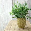 試してみて!意外に使いやすいです。植物をゴージャスに魅せる植木鉢2320 sm0shko0 ※植物は商品には含まれません