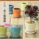 貫入加工・ポップ&JUNK風 陶器鉢Mサイズ【植木鉢 3〜3.5号向け】
