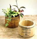 木製樽型プランターMサイズ【植木鉢 アンティーク 3078b ke0eo0】植木鉢
