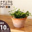 ナチュラル・アンティーク風 テラコッタ植木鉢直径10cm×高さ6cm【モスポット ※植物は別売り】