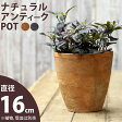 ナチュラル・アンティーク風 テラコッタ植木鉢トールtype:直径16.5m×高さ17.5cm【モスポット ※植物は別売り】