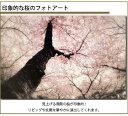 桜のインテリアアート 壁掛けキャンバスアート 植物 サクラ 自然 木 日本 春 ギフト 母の日 プレゼントアートポスター ウォールアート ファブリックアート ファブリックパネル インテリア雑貨 ジグレー版画 ジクレー ジークレー おしゃれ
