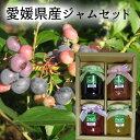 (有)高山ガーデン 愛媛県産ジャム4点セット ブルーベリー、いちご、いちじく、ゆず