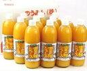 (株)オレンジフーズ 柑橘ジュース 3種類セット 500ml×12本(みかん・不知火・清見タンゴール)