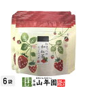 国産 静岡県産 紅ほっぺ(いちご)の和紅茶 10g(2g×5)×6袋セット ティーパック ティーバッ