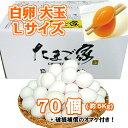 白卵 Lサイズ 70個入り 約5Kg 送料無料 鶏卵 お得 九州産 生食用 破損補償入り