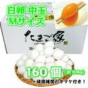 白卵 160個以上 Mサイズ 中玉 約10Kg 送料無料 鶏卵 若鶏卵 お得 九州産 生食用 破損補償入り