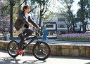 ENCOUNTER エンカウンター 20インチ 自転車 BMX 個性が光るブラックモデル BM-20E 【ブラック】【RCP】