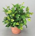 アートクリエイションポトス 【テーブルタイプ】グリーンシリーズ 261A25 グリーンシリーズ テーブルタイプ グリーンシリーズ 人工観葉植物 インテリア小物・置物