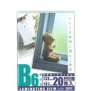 オーム電機 LAM-FB6203 ラミネートフィルム100ミクロン B6 20枚 [品番]00-5535 LAMFB6203