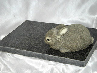 Further price cut! Natural granite PetSmart pet ( Wed )! 20 cm x 30 cm Rustenburg surface shine finishing the backside rough finishing ( translation and products )