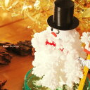 (マジッククリスマスツリー/マジック スノーマン/クリスマスプレゼント)聖夜にサンタが魔法をかけた?すぐに育つ不思議な雪だるま!MAGIC SNOWMAN