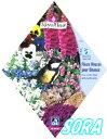 ロイヤルフルール 小鳥のための多年草ガーデン MIX【楽ギフ_包装選択】【楽ギフ_メッセ入力】 【RCP】05P03Dec16