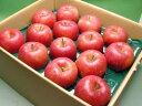 信州 安曇野 あらやファームのりんご シナノスイート約5kg【送料無料(北海道、沖縄は1000円)】