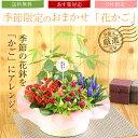 敬老の日 花【花かご ギフト】4種の花で作る季節の花かごギフ...