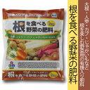 【朝日工業】【肥料】根を食べる野菜の肥料 1kg