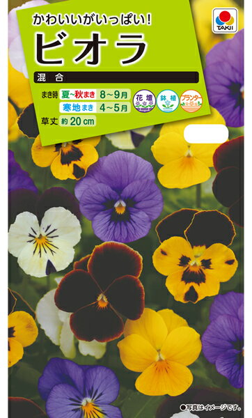タキイ種苗 花種 ビオラ 混合 メール便対応 (B03-077)