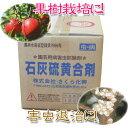 【殺虫殺菌剤】石灰硫黄合剤 10L ※5000円以上お買い上げで送料無料