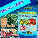 【黒松内産珊瑚化石使用】【土壌改良材】カルシウム珊瑚力(サンゴパワー) 1kg
