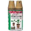【サカタのタネ】【ジフィー】そのまま植えられる鉢 丸型5.5cm 40個(4974449587094)