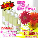 【送料無料】【日本精糖】【切花栄養剤】【切花延命剤】キープフラワー 2L×6本(ケース販売)