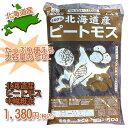 FOREX森産業 北海道産ピートモス 中繊維  50L ※5000円以上お買い上げで送料