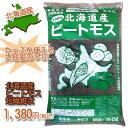 FOREX森産業 北海道産ピートモス 短繊維  50L ※5000円以上お買い上げで送料