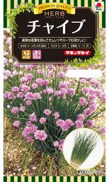 【メール便対応】【タキイ種苗】【ハーブの種】チャイブ[エゾネギ](ATY602)