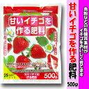 花ごころ 肥料 甘いイチゴを作る肥料 500g