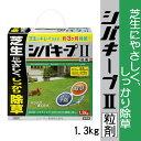 【除草剤】シバキープII粒剤 1.3kg 便利な散布器と手袋付き ※5000円以上お買い上げで送料無料
