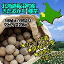 【北海道長沼町産】【種芋】きたあかり SSサイズ:20kg