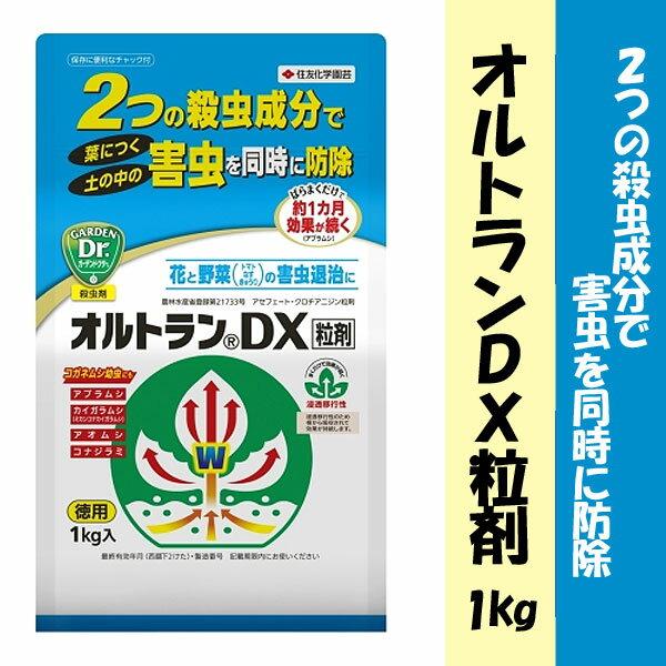 住友化学園芸殺虫剤オルトランDX粒剤1kg動画解説あり