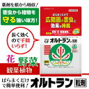 【住友化学園芸】【殺虫剤】GFオルトラン粒剤 1kg