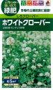 【メール便対応】【タキイ種苗】【緑肥】しろクローバー ホワイトクローバー [BCL532] 60ml入(5平方メートル撒けます)