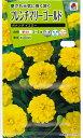 【メール便対応】【タキイ種苗】【花種】フレンチマリーゴールド ボナンザイエロー(FKJ252)