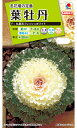 【有効期限間近】【メール便対応】【タキイ種苗】葉牡丹 丸葉系フレッシュホワイト(FHB522)