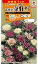 【有効期限間近】【メール便対応】【タキイ種苗】花壇向葉牡丹 F1フルメンバー(FHB640)