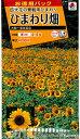 タキイ種苗 花種 ひまわり畑 大輪一重咲黄色 お徳用パック メール便対応 (B06-005)