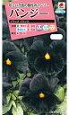 タキイ種苗 【メール便対応】[タキイ交配]パンジー ブラックプリンス(FPA150)※5000円以上お買い上げで送料無料