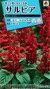 【メール便対応】【タキイ種苗】【花種】サルビア ホット ジャズ(FSR115)