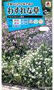 【メール便対応】【タキイ種苗】【花種】わすれな草 アルペストリス混合(FWS110)