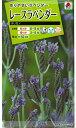 【メール便対応】【タキイ種苗】【花種】レースラベンダー オリガノ(FSZB35)