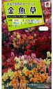 タキイ種苗 【メール便対応】金魚草 マジックカーペット混合(FKG210)※5000円以上お買い上げで送料無料