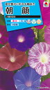 【メール便対応】【タキイ種苗】【花種】朝顔 大輪咲混合(FAA110)