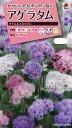 【メール便対応】【タキイ種苗】【花種】アゲラタム タイムレスミックス(FAGA00)