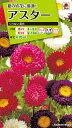 【メール便対応】【タキイ種苗】【花種】アスター くれない混合(FAS540)